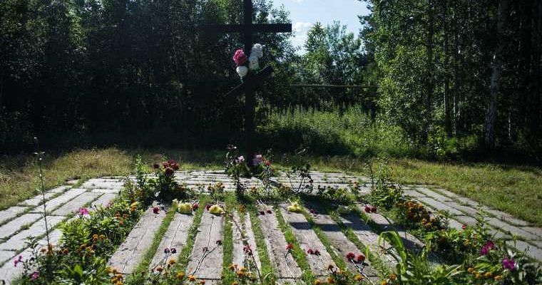 убийство царской семьи новые данные версия СК Романовы Молодцова истори Шитов