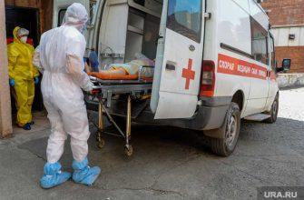 коронавирус лидеры ЯНАО распространение новые случаи
