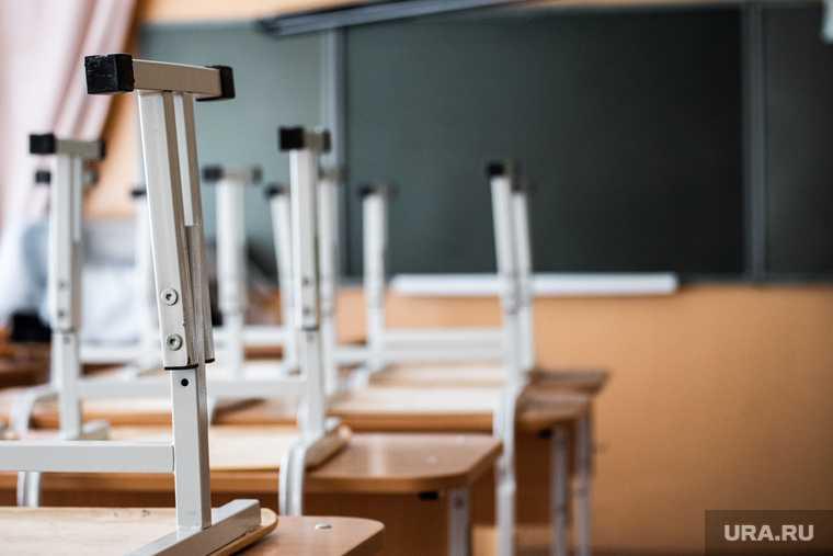 дистанционное образование в школах
