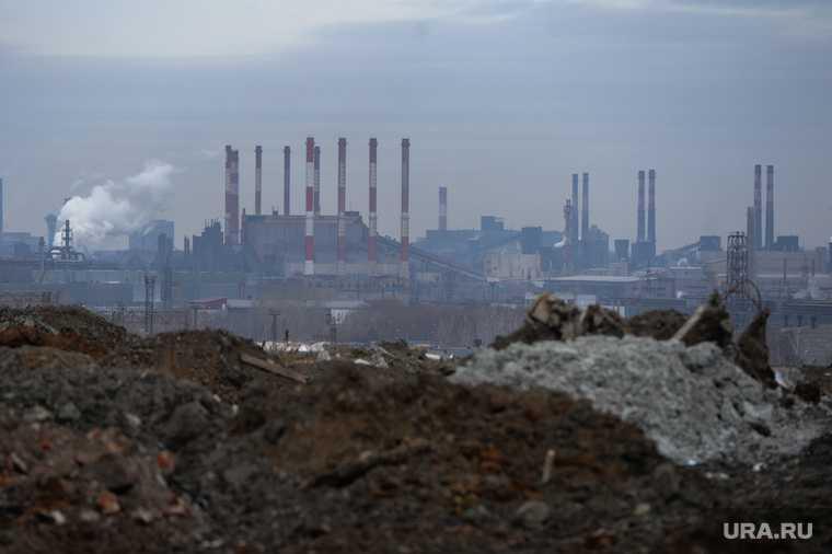 Правительство РФ поручило регионам выявить ядовитые территории