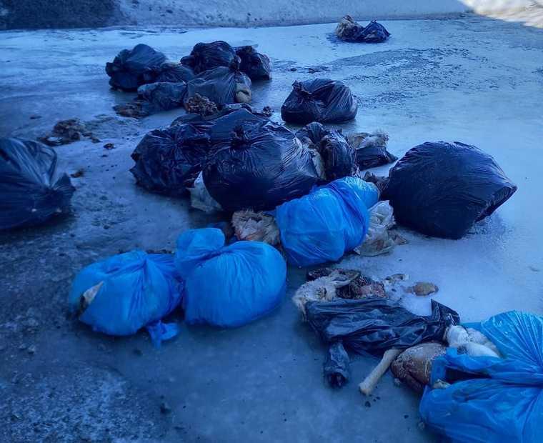 Курганцы нашли в реке 18 мешков с останками косуль. Видео. Фото