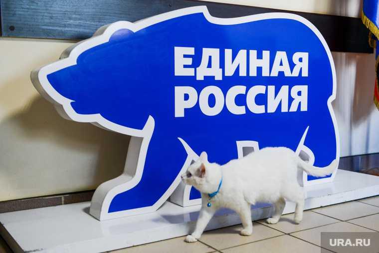 Форсюк Ирина праймериз