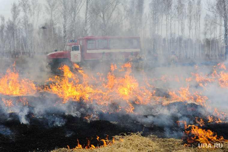 Челябинская область Пластовский район лесничество пожар лес огонь автомобиль ГУ лесами