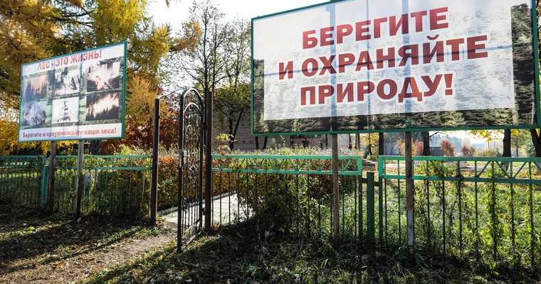 пожар лес режим Челябинская область штрафы