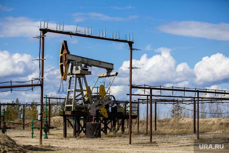 газ и нефть когда откажутся