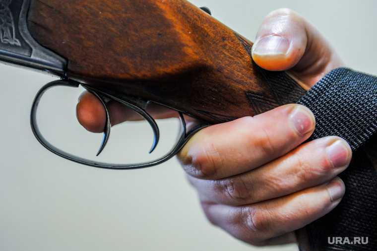 законопроект оружие госдума хинштейн
