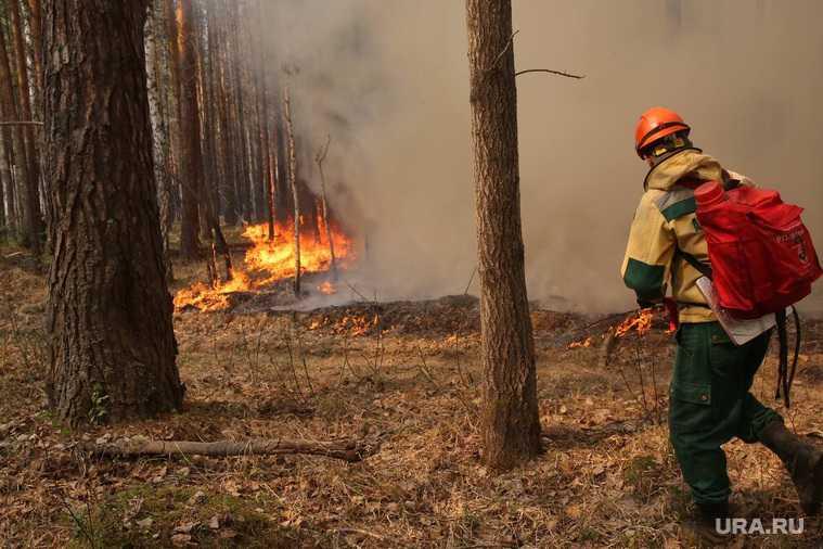 пожары пострадавшие тюменская область