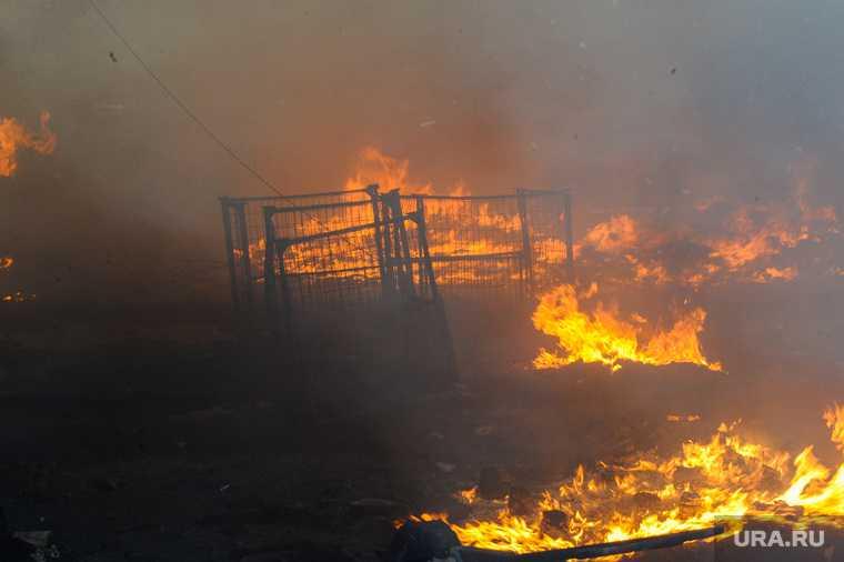 Сколько человек за сутки погибли при пожарах в Тюменской области