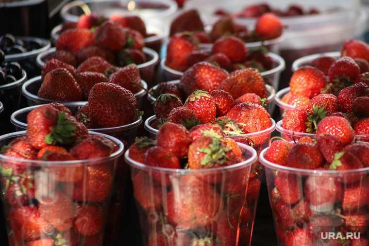 можно ли покупать ягоды из Киргизии